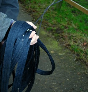 Basic Horse Care Lunging rope (www.basic-horse-care.com)