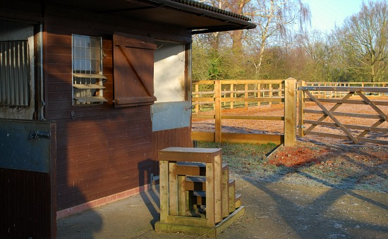 Basic Horse Care Stables and School (www.Basic-Horse-Care.com)