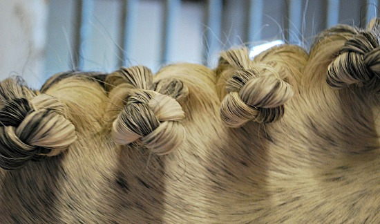 Plaiting mane finished (www.Basic-Horse-Care.com)