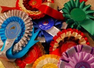 Rosettes (www.Basic-Horse-Care.com)