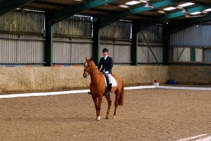 Shows Dressage horse and rider (www.basic-horse-care.com)