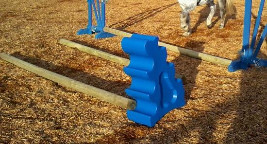 Schooling Pole Work (www.Basic-Horse-Care.com)